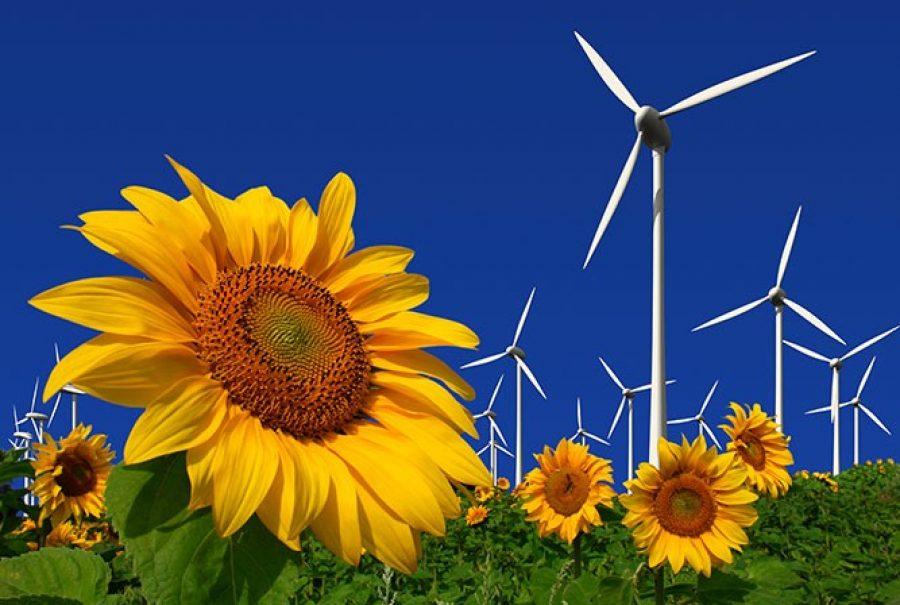 El clúster vasco de energía prevé un ascenso de las renovables